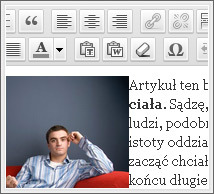 Widok panelu WordPress'a